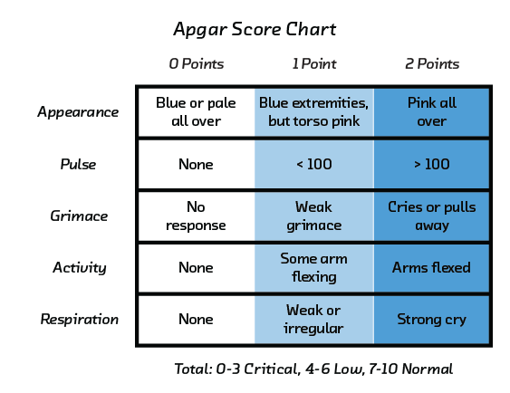 FIGURE 2.7 The APGAR score, used in evaluating the health of infants, shows how a simple model can inspire confidence because its operations are understandable.