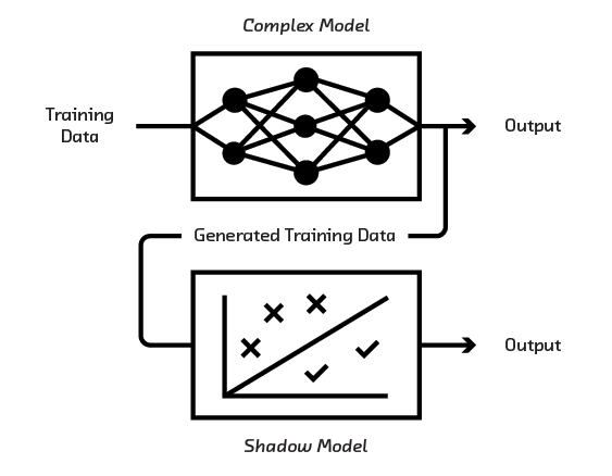 FIGURE 3.13 A shadow model can be trained from more complex models.